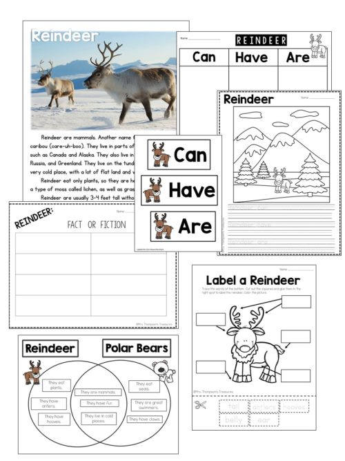 Lots of reindeer science activities for little learners.