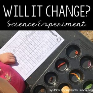 Fun and simple science experiment to predict and observe the changes to objects that are left in the sun.