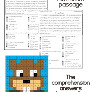 Nonfiction reading comprehension passage and questions about groundhogs - use the answers to create the cute mystery picture.