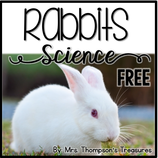 Free spring science activities about rabbits for early elementary